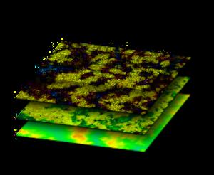 GIS layered